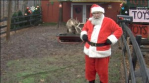 Live Santa Reindeer Feeding Webcam